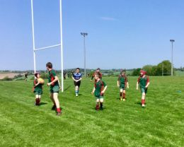 Dromore Mini Rugby Festival