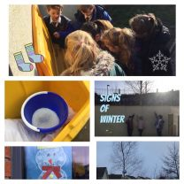 Winter Pic Collage in Mrs Thompson's class ❄️